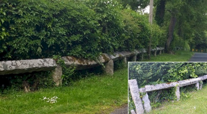 carlow-fence-inset