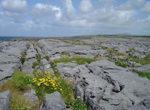 burren-pavement-300x225