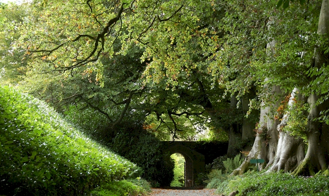 Altamont House Gardens