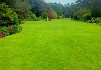 Altamont Lawn