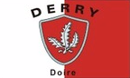 Derry: Flag, colours and crest
