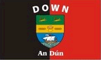 Down: Flag, colours and crest