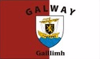 Galway: Flag, colours and crest
