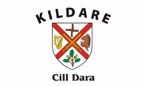 Kildare: Flag, colours and crest