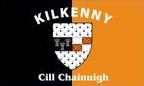 Kilkenny: Flag, colours and crest