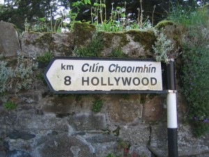 Hollywood, Ireland by Chris Radcliff