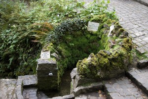 Tobernault Holy Well by dlkinney