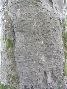 Autograph Tree by IrishFireside